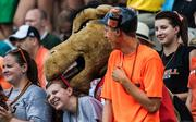 Though their team was getting dominated on the field, Campbell fans didn't get too glum. Here, the Fighting Camel mascot's antics get a smile. The 49ers beat Campbell 52-7 in their inaugural football game at Jerry Richardson Stadium, on Aug. 31, 2013.