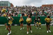 Charlotte 49ers cheerleaders and fans celebrate the team's first kickoff.  The 49ers beat the Campbell Fighting Camels 52-7 in their inaugural football game at Jerry Richardson Stadium, on Aug. 31, 2013.