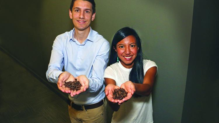 Poda Foods co-founders Kenny Cloft and Yesenia Gallardo are starting up a cricket farm in Portland, where they will rear crickets and turn them into powder. Click through to meet the three companies at the forefront of Portland's cricket market.