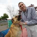Bigger shelter equals more ways to help for <strong>SPCA</strong>