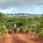 Four Seasons wants you to know that Lanai is full of adventures
