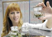 Rebecca Davies holds up a sampling of medical cannabis at Canna Care.