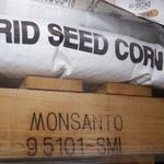 As Monsanto and Bayer consolidate, smaller agtech looks for opportunity