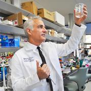 David Weiss, Ph.D. is the vice president of research for the University of Texas Health Science Center.