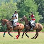 International Polo Club sold for $72M