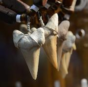 Shark tooth necklaces by, who else, the Charming Shark company. Charming, sharp and appropriate.