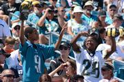 The claws came out in the stands after another Jaguars misfire.