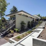 Home of the Day: Luxuriously Renovated Mill Valley View Home