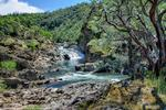 <strong>Tsakopoulos</strong> selling property to American River Conservancy for $4.8M
