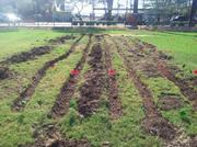 The  Madison Street Veteran's Association's garden plot will be planted on September 21.