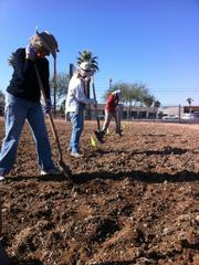 Volunteers prepare one of the community gardens for seeding.