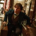Imax, Warner Bros. sign deal for up to 12 films