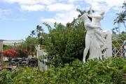 Statues are seen at a Kahala Avenue property formerly owned by Japanese billionaire Genshiro Kawamoto, who sold all 27 of his Kahala properties to Alexander & Baldwin Inc. for $98 million.
