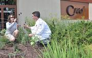 Creo's executive chef Brian Bowden and designer Sandra Walck in the restaurant's herb garden.