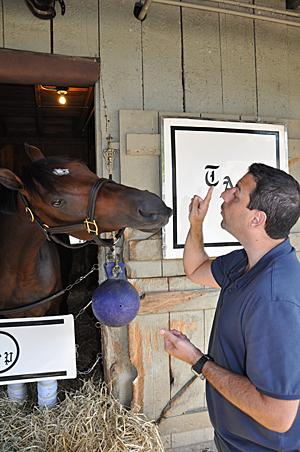 Mike Repole gets ready to feed a mint to Stay Thirsty, a horse he owns that is stabled at the barns of trainer Todd Pletcher. Stay Thirsty won Saratoga's biggest race, the $1 million Travers Stakes, last year.