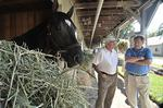 Breeders' Cup wins boost Capital Region horse owner Lucarelli, trainer Brown