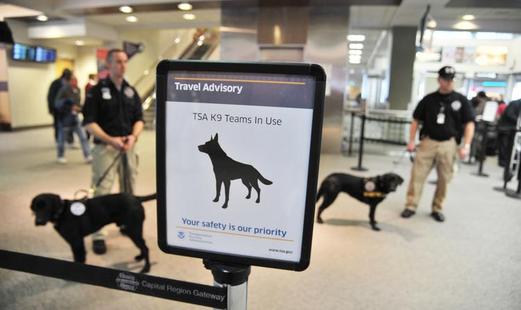 The new canine passenger-screening team at Albany International Airport.