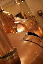 <strong>Davidson</strong> Brothers Brewing eyeing sites for $3 million brewery in Glens Falls