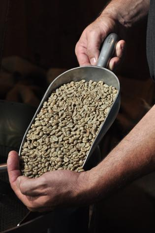 Professor Java's imports raw beans from more than 20 countries for its coffee shop in Colonie.