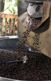Freshly roasted beans are ready for shipping-or-sipping-at Professor Java's.