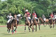 "Polo players scramble for the ball during a match at Saratoga Polo Association. There are four players on each team. A match is divided into six periods, called a ""chukker."" Each chukker lasts 7 minutes, 30 seconds, with a break in between. The object is to hit the ball through the opposing team's 24-foot-wide goal."