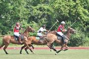"Polo teams consist of four players. Each player rides six different horses during a match (one horse per period, or ""chukker""). That means a team must transport at least 24 horses to a match."