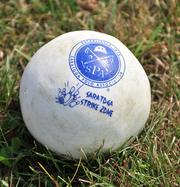 A polo ball is made of plastic and a little bigger than a baseball, but lighter.