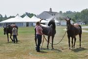 "Miranda Duel, right, washes down horses during a break between a ""chukker"" at Saratoga Polo Association."