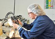 Alison Young works on a catheter at AngioDynamics in Queensbury. AngioDynamics invested $355 million this summer to purchase Navylist, a competitor based in Massachusetts that also operated plants in Glens Falls. The deal is expected to increase revenue by 66 percent.