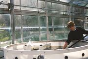 Student Tim O'Donoghue experiments in the Darrow School's Living Machine water treatment center.