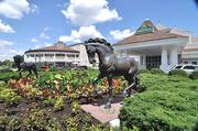 Saratoga Casino and Raceway ranks No. 1 on the list of the region's tourist attractions.
