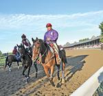 Horse racing's economic impact in New York in the billions of dollars, study says