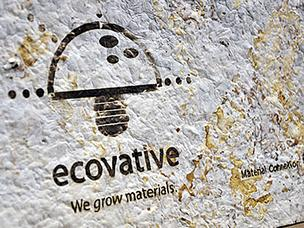 Ecovative musroom technology