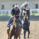 New owners key to Saratoga racing magic