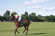 """A player of the """"sport of kings"""" at Saratoga Polo, 2 Bloomfield Road in Greenfield Center. The sport has been played here since the late 19th century. Admittance is at 4 p.m. every Friday and Sunday. Tickets are $25 to $40."""