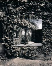 "Judith Vejvoda's ""Columns and Vines"""