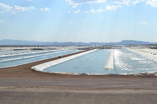 At Sapphire Energy's Green Crude Farm in Columbus, NM, 1.1 and 2.2 acre ponds cultivate algae cultures in the high desert in New Mexico.