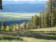 The new trails will open by the end of this summer, bringing the resort's total to more than 60 miles of trails.
