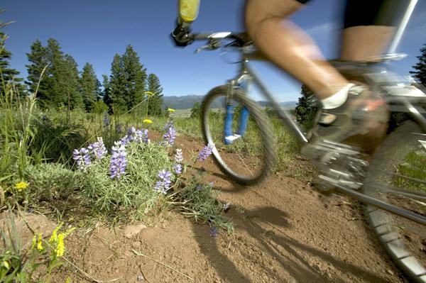 Angel Fire Resort will break ground on 20 miles of new mountain bike trails in May.