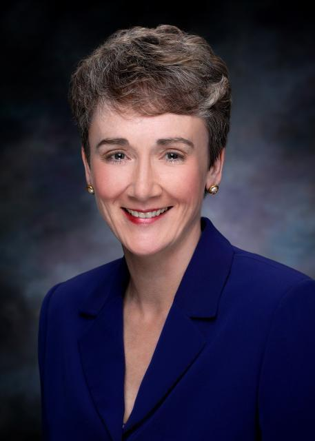 Senate candidate Heather Wilson told real estate executives Monday that making small community banks exempt from Dodd-Frank banking legislation would help stimulate New Mexico's real estate and construction business.