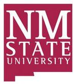 NMSU adds 42 faculty members in time for fall semester