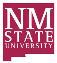 NMSU has named an interim president.