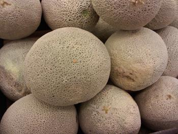 The cantaloupes were harvested in August and September and distributed widely in the U.S.