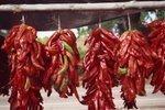 New festival to celebrate Middle Rio Grande chile