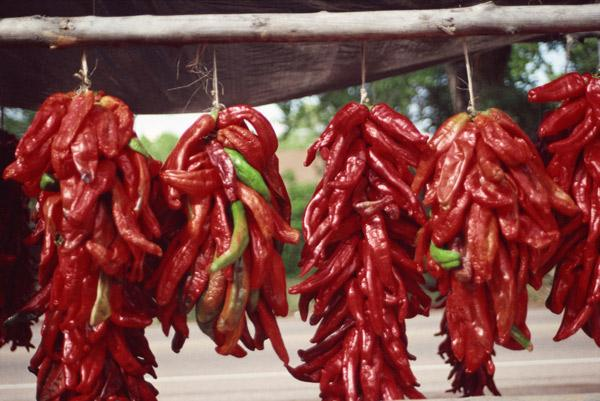 The first VIVA New Mexico Chile Festival will be held Sept. 8 and 9 at the 288-acre Wagner's Farmland Experience farm in Los Lunas, the farm said in a news release.
