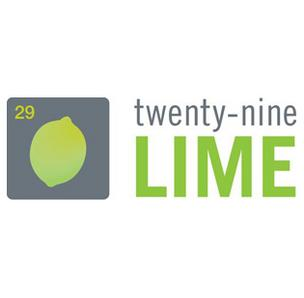 Twenty-Nine Lime, the Albuquerque public relations firm whose roots stemmed from Rick Johnson & Co., has filed for liquidation in U.S. Bankruptcy Court in Albuquerque.