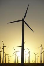 A one-year lame-duck renewal of wind credit would be of little use, advocates say