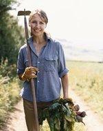 Nonprofit to train Austin women to become farmers