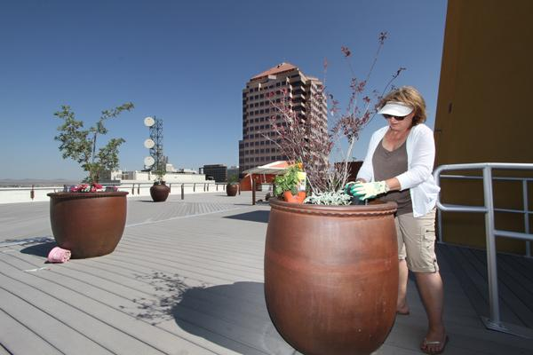 Lynn Mosher adds some landscaping elements to the Banque Building's rooftop deck, which offers a 360-degree view.