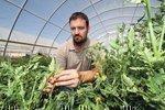 Skarsgard raises farm fresh foods in Albuquerque's urban center